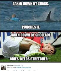 Funny Shark Memes - the 18 best mick fanning shark memes all in one place the inertia