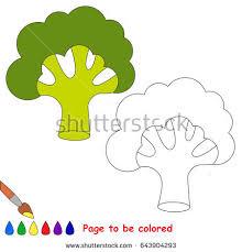 green broccoli colored coloring book stock vector 643904308