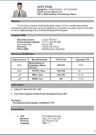 resume title examples resume example and free resume maker