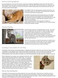 Upholstery Terms Scratz Guide Scratzme Famous Feline Furniture
