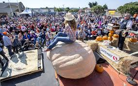 pumpkin victor tips scales at 2 363 pounds sfgate