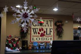 what to expect when you visit great wolf lodge traveling
