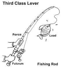 class 2 lever levers pinterest