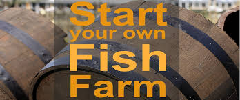 Backyard Fish Farming Tilapia Turn Your Home Into A Home Based Fish Farm Worldwide Aquaculture