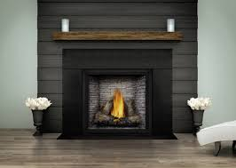 napoleon archives quality fireplace u0026 bbq