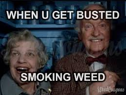 Memes About Smoking Weed - when you get busted smoking weed 420 marijuana weed smoke memes