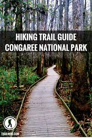 South Carolina travel distance images The 25 best south carolina ideas congaree national jpg