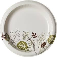 paper plates dixie pathways 10 heavy weight paper plates 125 pk sxp10path