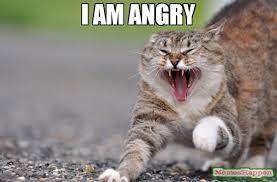 Angry Meme - i am angry meme custom 55271 page 4 memeshappen