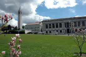 uc berkeley sample essays best delegate summer programs science technology and global our