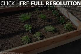 raised garden bed kits costco home outdoor decoration
