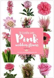 wedding flowers names essential pink wedding flowers guide names seasons pics weddbook