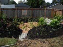bird backyard wildlife habitat way to attract backyard wildlife