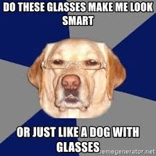 Dog With Glasses Meme - do these glasses make me look smart or just like a dog with glasses