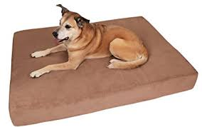 pillow top dog bed amazon com big barker 7 pillow top orthopedic dog bed xl size