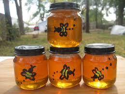 backyard beekeeping urban pioneer story