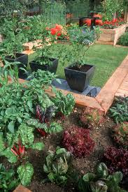 small space vegetable garden at home plant u0026 flower stock