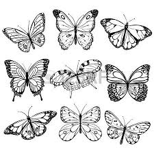 6 842 butterfly stock illustrations cliparts and royalty