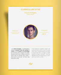 Resume Design Template Free Professional 2 Page Resume Design Cv Template Ai File