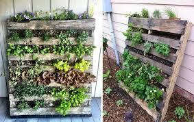 come realizzare un giardino pensile come creare un orto verticale con i pallet soluzioni di casa