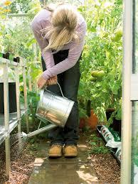 gardening picture healthy fruit and veggie gardens diy