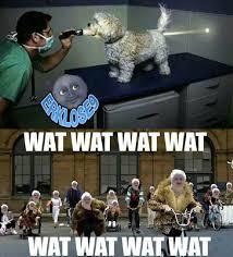Lool Meme - lool meme by erklose9 memedroid