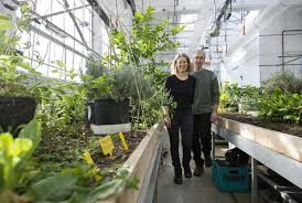Yes In My Backyard Gardening Matchmaking Service Cultivates Real Romance Toronto Star