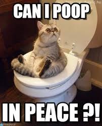 I Pooped Today Meme - can i poop in peace can i poop on memegen