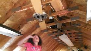 Two Bladed Ceiling Fans by Abby Tests A Hunter Original Ceiling Fan With Two Blades Youtube