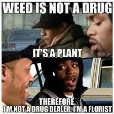 Weed Memes - weed is not a drug its a plant meme