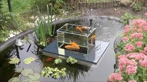 flying aquarium un observatoire pour poissons trop génial http