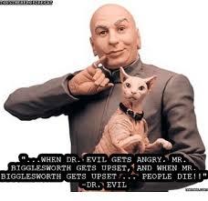 Dr Evil Meme - tony the heroetrecat when dr evil gets angry mr bigglesworth gets