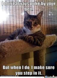 Lolcat Meme - lol cat by mark123 meme center