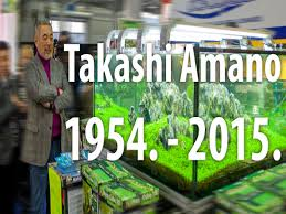 takashi amano 1954 2015 youtube