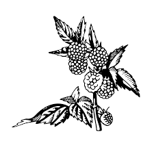 coloring pages free downloads