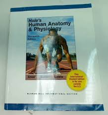 Hole Anatomy And Physiology 13th Edition Vander Human Physiology 13th Edition Pdf Download Download Wcw