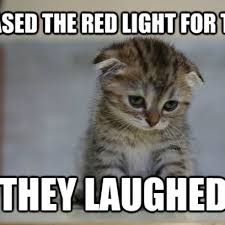 Sad Kitten Meme - embarrassed kitten was just protecting the world from weapons of