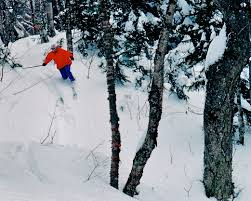 marquette backcountry ski review back story universal klister