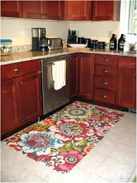 Apple Kitchen Rugs Apple Kitchen Rugs Rug Walmart Large Themed Hixathens