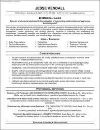Resume Templates Example Sample Resume Template Free Examples With Writing Tips For College