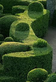 5229 best u0027garden ideas garden designs u0026 flowers by london
