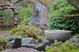 Japanese Rock Garden Plants Garden Project A Rock Garden Plants
