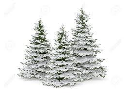 snow christmas tree christmas tree covered with snow using snow
