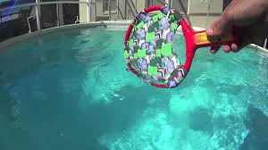 snake in pool orlando florida hd1080 youtube