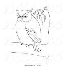 clipart owl black and white clip art of a fat owl in a tree black and white line art by