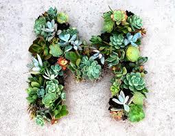 succulent wreath succulent initial wreath artzycreations