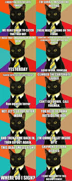 Business Cat Memes - business cat i should not be laughing this much at this funny