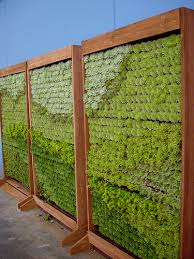 living wall panels by succulent gardens outdoor wall planters