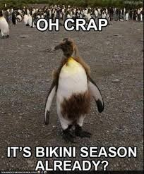 Rofl Meme - rofl dump on twitter oh crap bikini season http t co