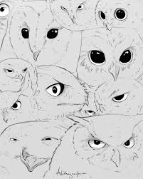 owl sketches by alithographica on deviantart